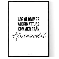 Från Hammerdal