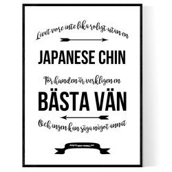 Livet Med Japanese Chin