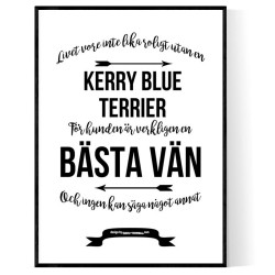Livet Med Kerry Blue Terrier