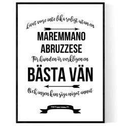 Livet Med Maremmano Abruzzese