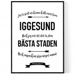 Mitt Hem Iggesund Poster