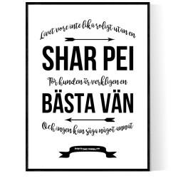 Livet Med Shar Pei