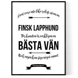 Livet Med Finsk Lapphund
