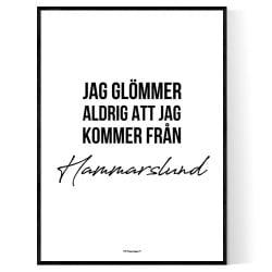 Från Hammarslund