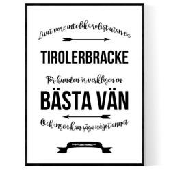 Livet Med Tirolerbracke