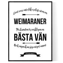 Livet Med Weimaraner