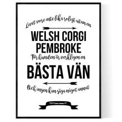 Livet Med Welsh Corgi Pembroke