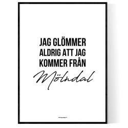 Från Mölndal