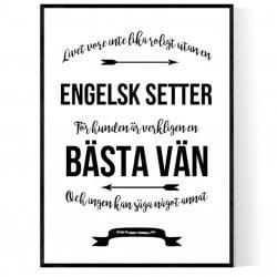 Livet Med Engelsk Setter Poster