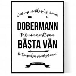 Livet Med Dobermann Poster