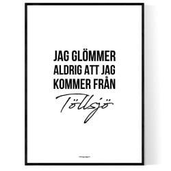 Från Töllsjö