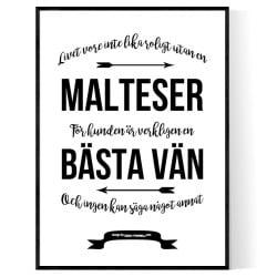 Livet Med Malteser