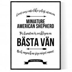 Livet Med Miniature American Shepherd Poster