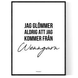 Från Wenngarn