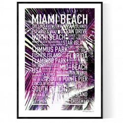 Miami Beach Exclusive