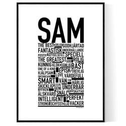 Sam Poster