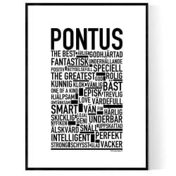 Pontus Poster