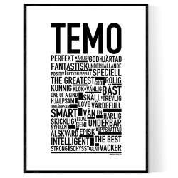 Temo Poster