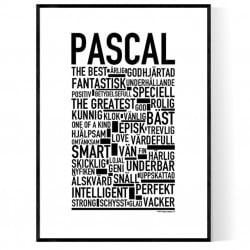 Pascal Poster