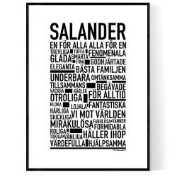 Salander Poster