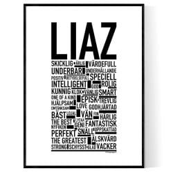 Liaz Poster