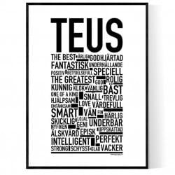 Teus Poster