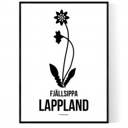 Landskapsblomma Lappland