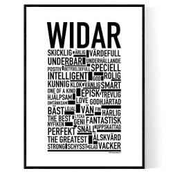 Widar Poster