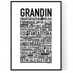 Grandin Poster