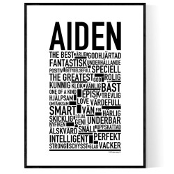 Aiden Poster