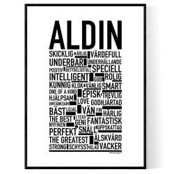 Aldin Poster