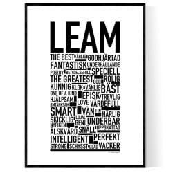 Leam Poster