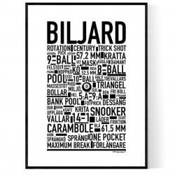 Biljard Poster