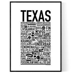 Texas Hundnamn Poster