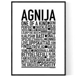 Agnija Poster