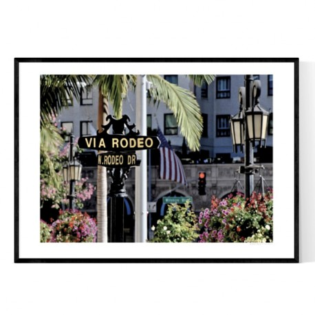 Rodeo Drive Poster