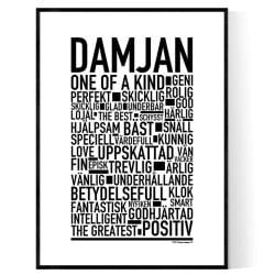 Damjan Poster