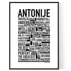 Antonije Poster