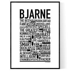 Bjarne Poster