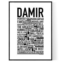 Damir Poster