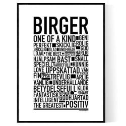 Birger Poster