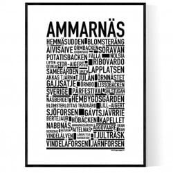 Ammarnäs Poster
