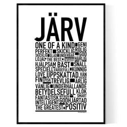 Järv Poster