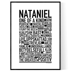 Nataniel Poster