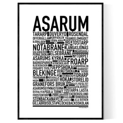 Asarum Special Poster