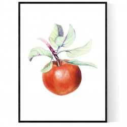 Watercolor Apple Poster