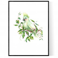 Tropical Bird Poster