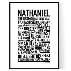 Nathaniel Poster
