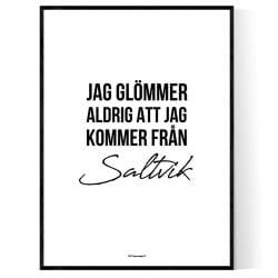 Från Saltvik