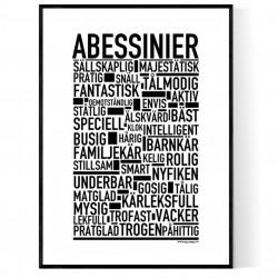 Abessinier Poster